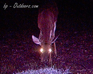 Moultrie Game Watcher 4.0 Megapixel
