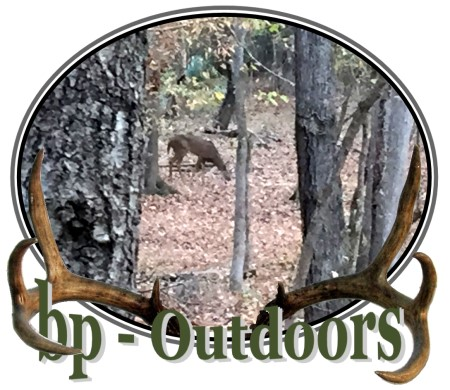 Views of a deer from a hunting ground blind by Ameristep