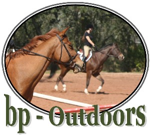 Equine and equestrian events, horseback trail riding, working horse, shooting horse, horse chat