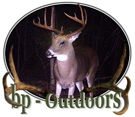 Digital Game and Trail Camera Buck Deer - Moultrie Game Camera