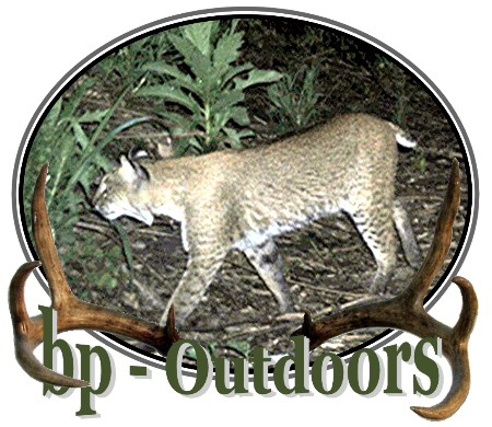 Trail Cameras, Scouting Cameras, Game Cameras, Digital Trail Cameras, Digital Scouting Cameras, Deer Cameras, Digital Deer Cameras, Outdoor Cameras, Camera Reviews, Moultrie, Cuddeback